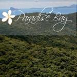 Socialface Praise – Paradise Bay Eco Escape